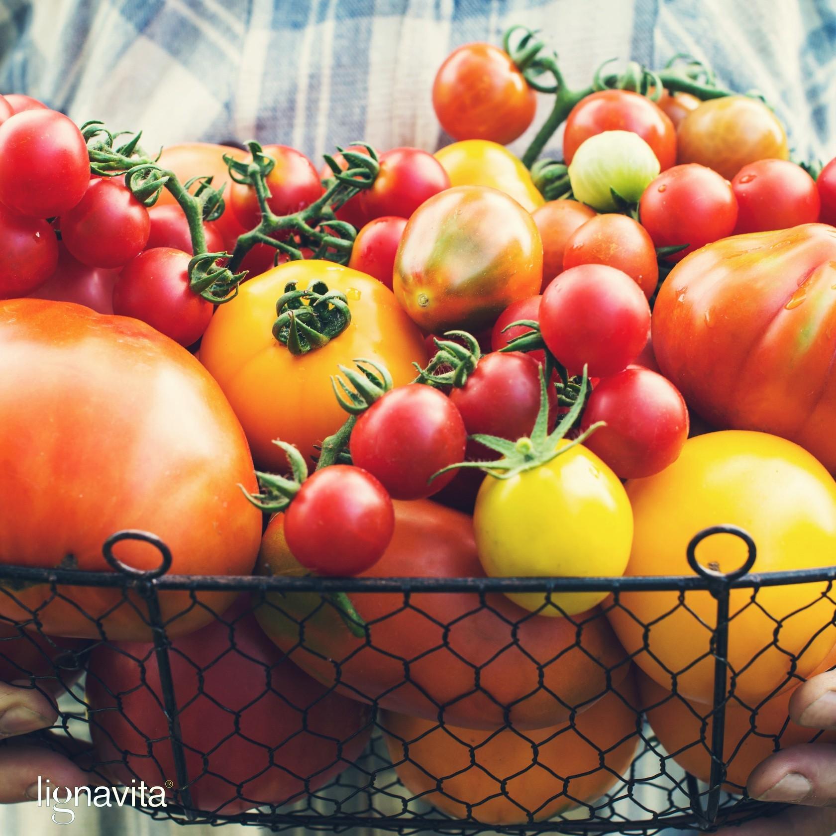 Tomaten, zo gezond en sappig!